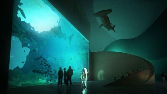 batumi aquarium56