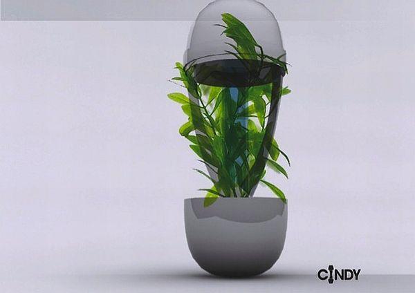 cindy ashtray