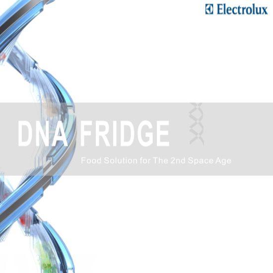 dna fridge 01