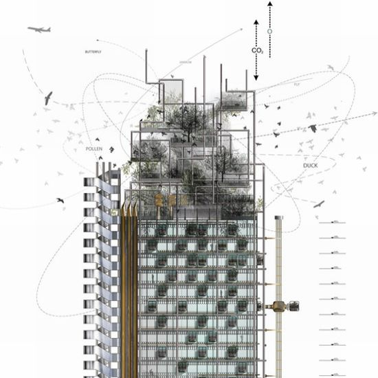 engineered biotopes tower 06