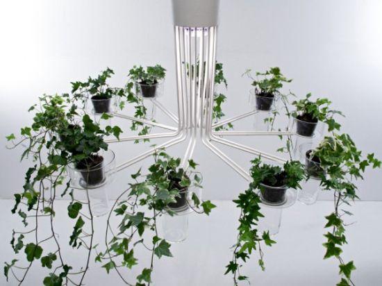 flora chandelier