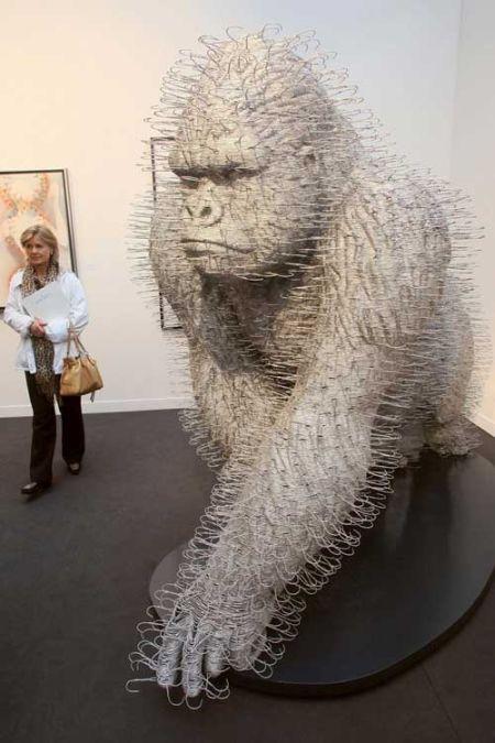 gorilla by david