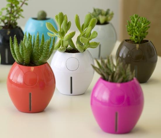 grobal plant pots