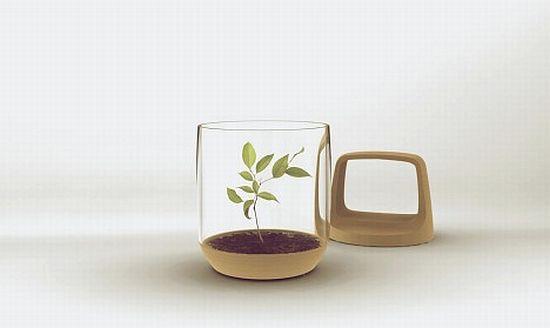 lantern concept 02
