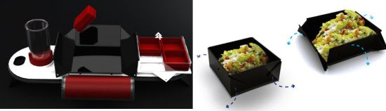 lunch box tray 5
