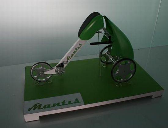 mantis 03