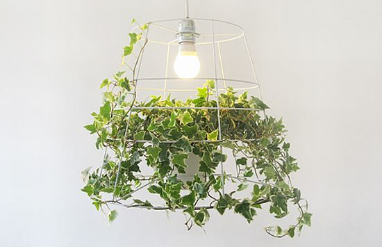 photosynthesis lamp 01