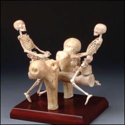 skeleton seesaw