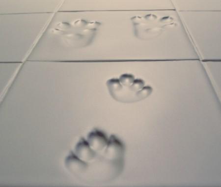 snow print tiles
