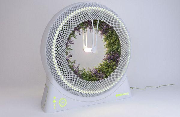The Green Wheel