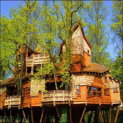 tree house 1 1451