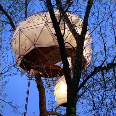 tree house 3 1451