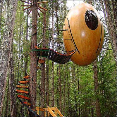 tree house 5 1451