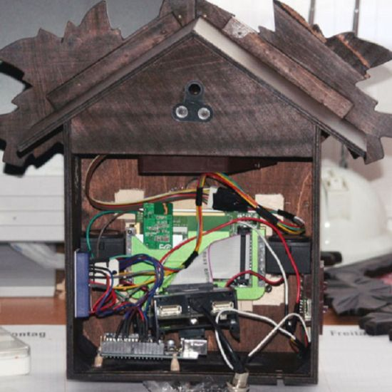 twitter enhanced cuckoo clock 01