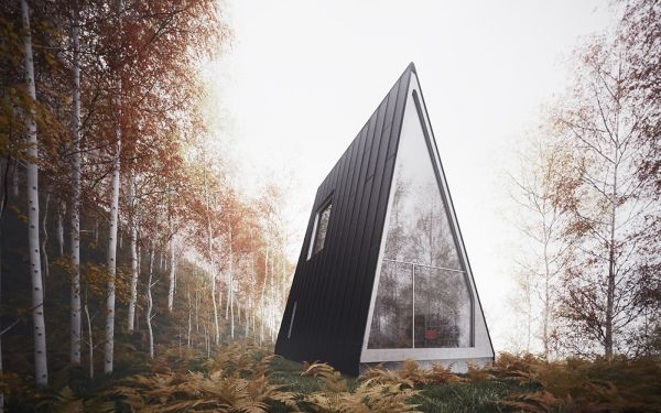 Ultra-Minimalist Cabin