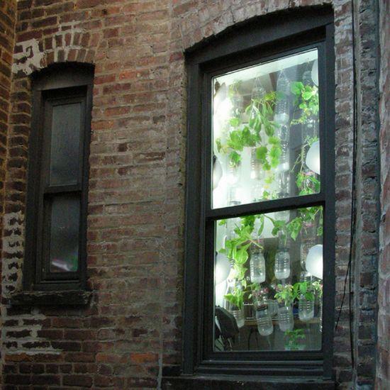 windowfarms 06