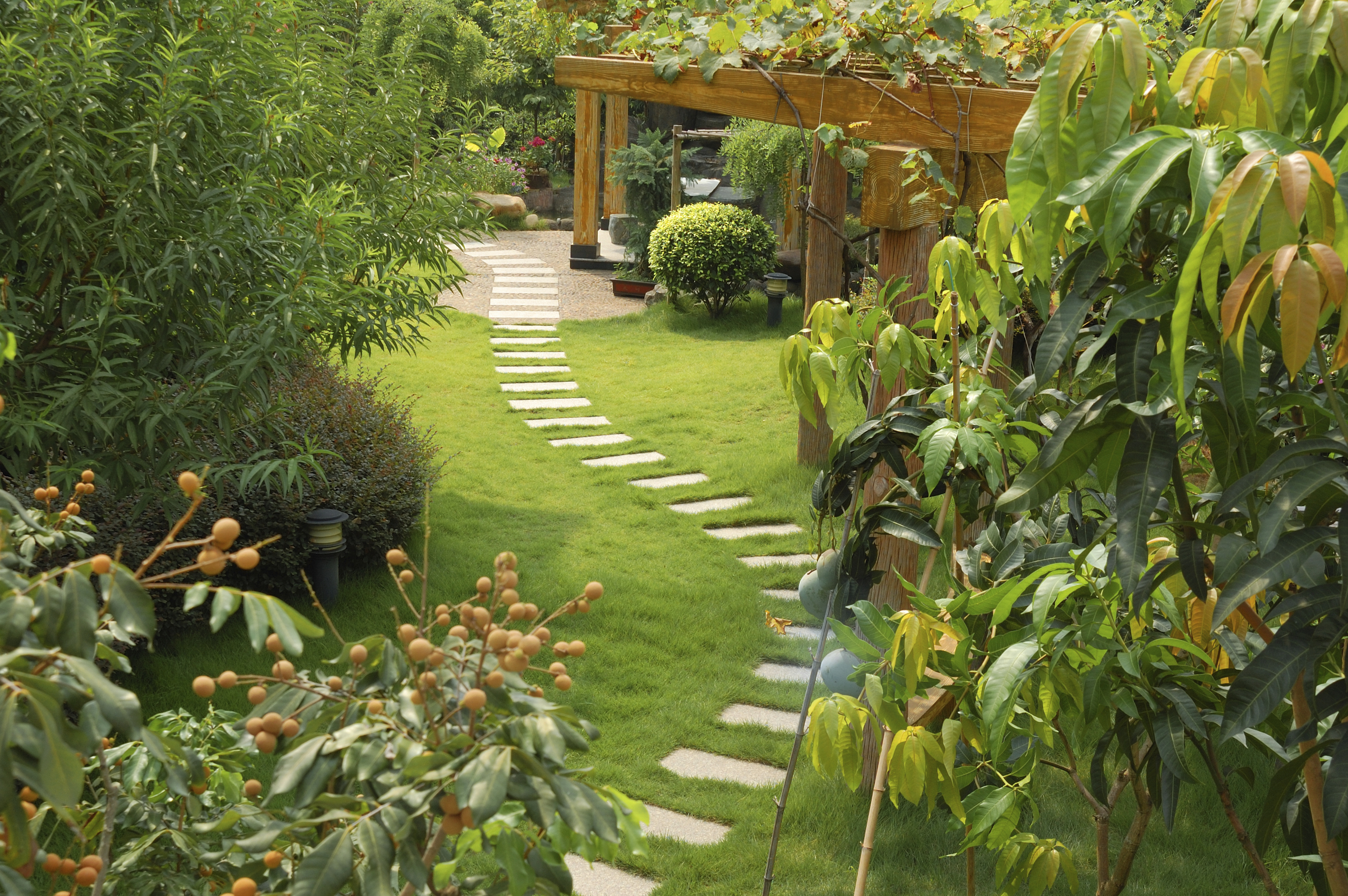 Garden | Designbuzz : Design ideas and concepts