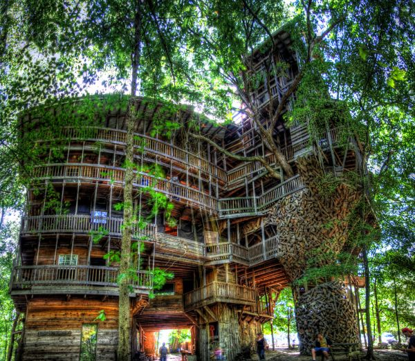 The World's Largest Tree House1