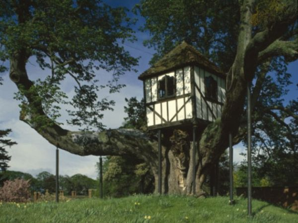 pitchford-hall-treehouse-628x471
