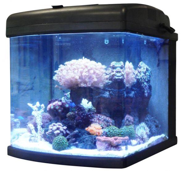 large_8697_28g-Nano-LED-Tank1-Hi