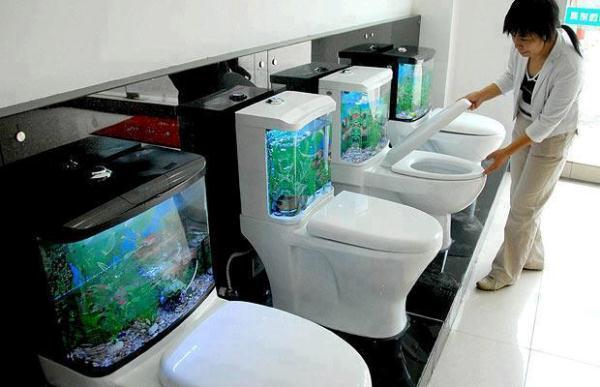 Aquarium-Toilet-Tank-1