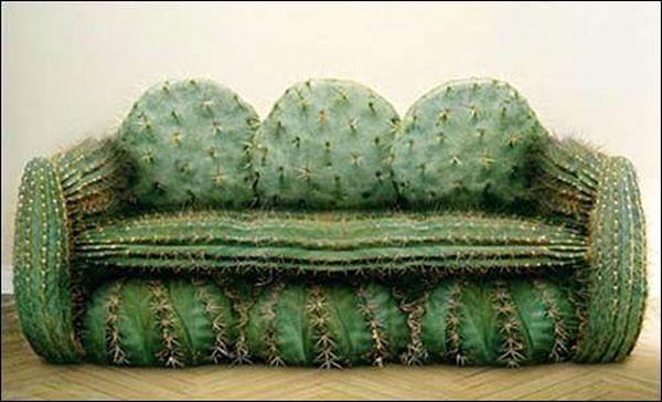 sofa_cactus