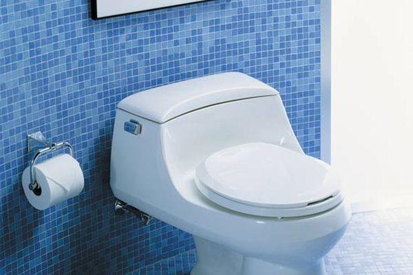 toilet-low-flow-sanraph-kohler_8c7004afacd2944cc27d3597921b1a11_3x2