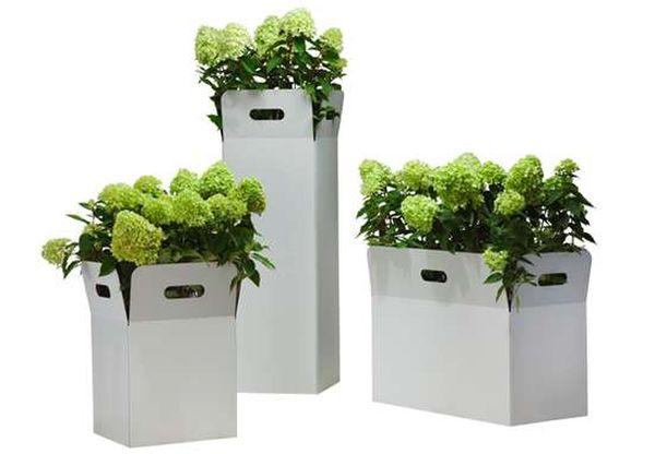 flora-box-planters