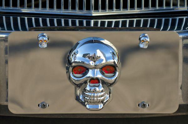 skull-license-plate-jill-reger