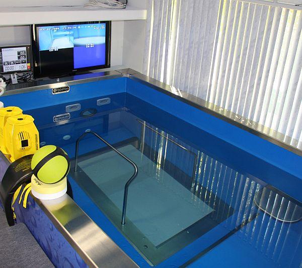 The Underwater Treadmill