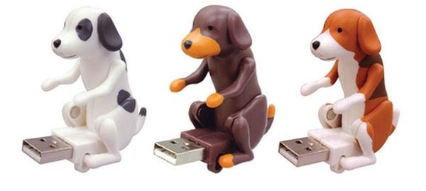 dog flash drive
