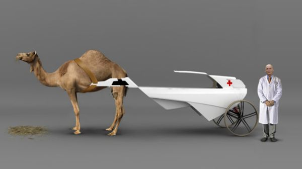 Camel Ambulance