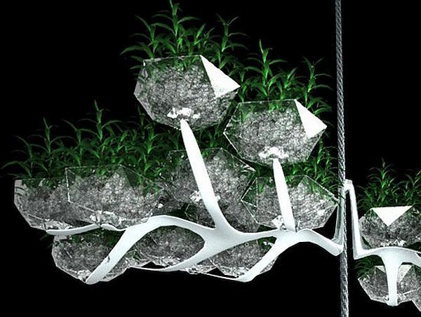 Concept vertical window garden
