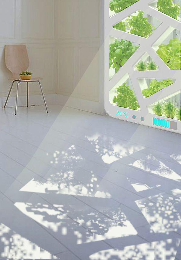 The smart window gardens