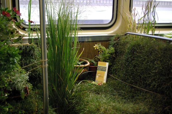 Chicago Plants Rail Car