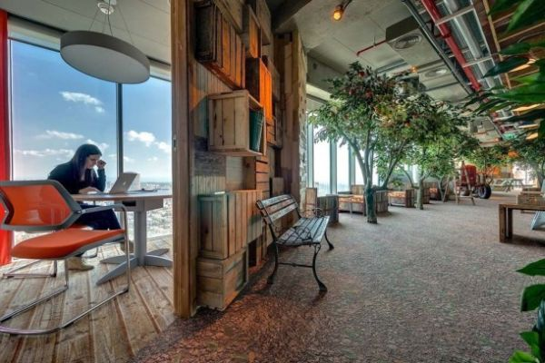 Google  Office  eco-friendly design