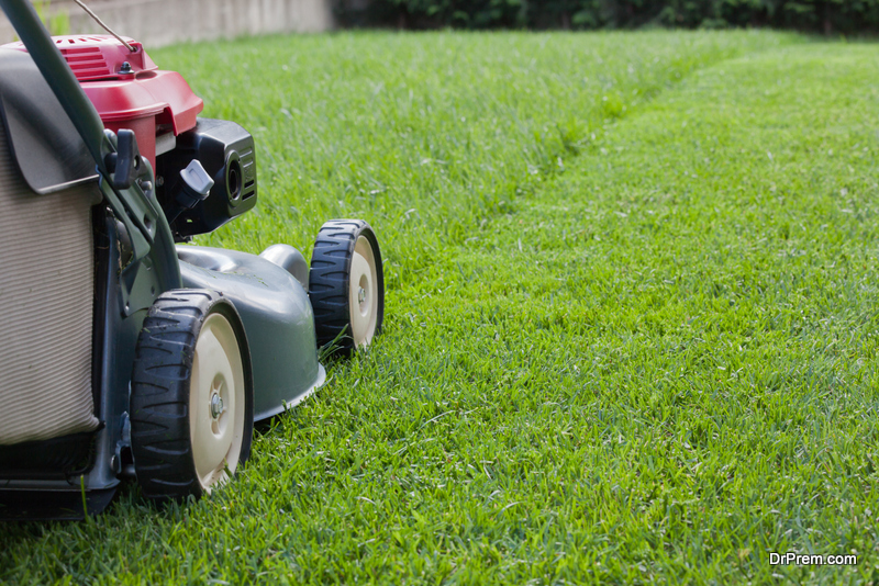 Keep-the-Grass-short