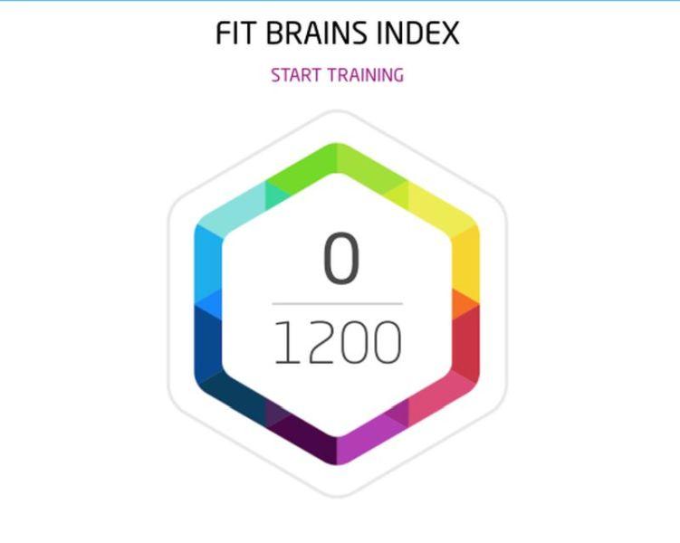 Fit Brains