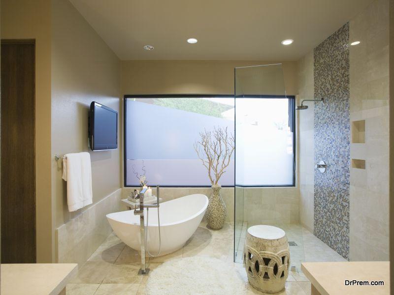 Plexiglass Shower Enclosure