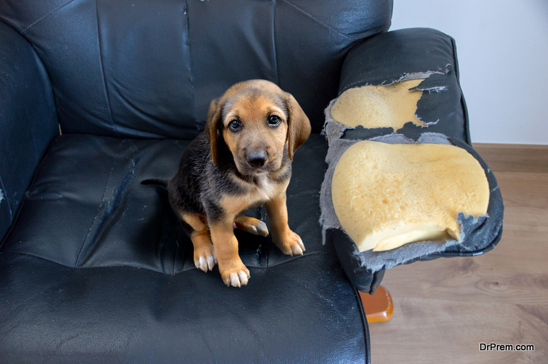 Fix or Remove Broken Furniture