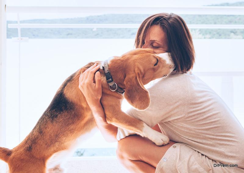 pet-lover.