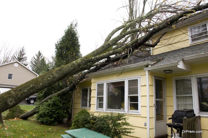 damaged Home